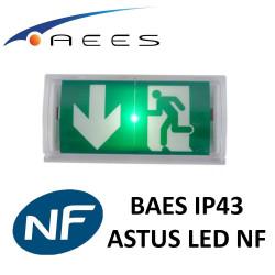 Bloc BAES Astus LED certifié NF
