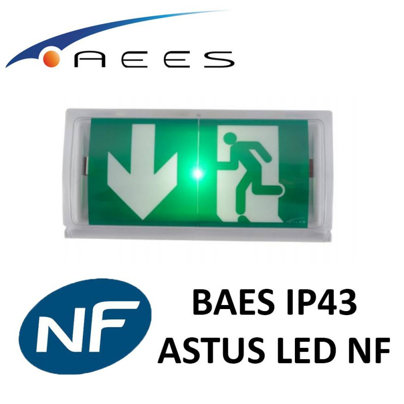 Bloc BAES Astus LED certifié NF RIVA AEES Emerson