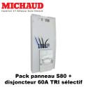 Pack panneau S80 Michaud + disj 60A triphasé selectif Legrand