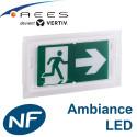 BAES d'ambiance anti-panique à LED Sati AEES Vertiv