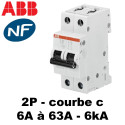 Disjoncteur bipolaire 6kA courbe C ABB
