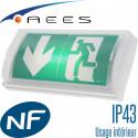 Bloc autonome SATI par AEES à utiliser en intérieur IP43