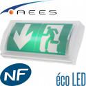 Bloc autonome RIVA Eco LED 45lm Sati AEES Vertiv