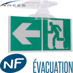 Bloc BAES ASTUS Tempo AEES évacuation SATI AEES Emerson