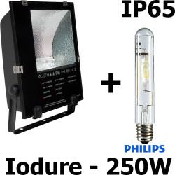 Projecteur iodure 250w avec clips INOX