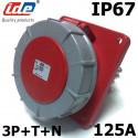 Socle de tableau Hypra 125A tétrapolaire 380V à 415V IP67 IDE