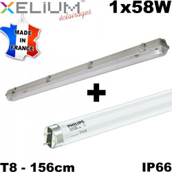Reglette étanche IP66 XELIUM Ascari 1x58W HF + clips inox + tube Philips 840 HR 20,000h