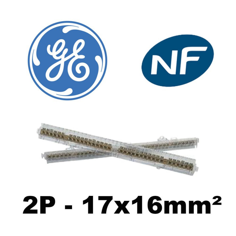 Bornier Distri 2P 17x16mm² pour Fix o rail 150 GE General Electric