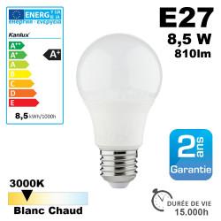 Ampoule LED E27 3000K 6,5W équivalent 45W - 550lm Kanlux