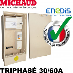Coffret provisoire triphasé 30/60A Michaud P493 Michaud