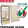 Coffret provisoire triphasé 30/60A Michaud P493