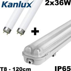 Reglette néon 2x36W étanche + 2 tubes fluo