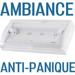 Bloc d'ambiance, Bloc anti panique AEES ou Kaufel à 87€ HT